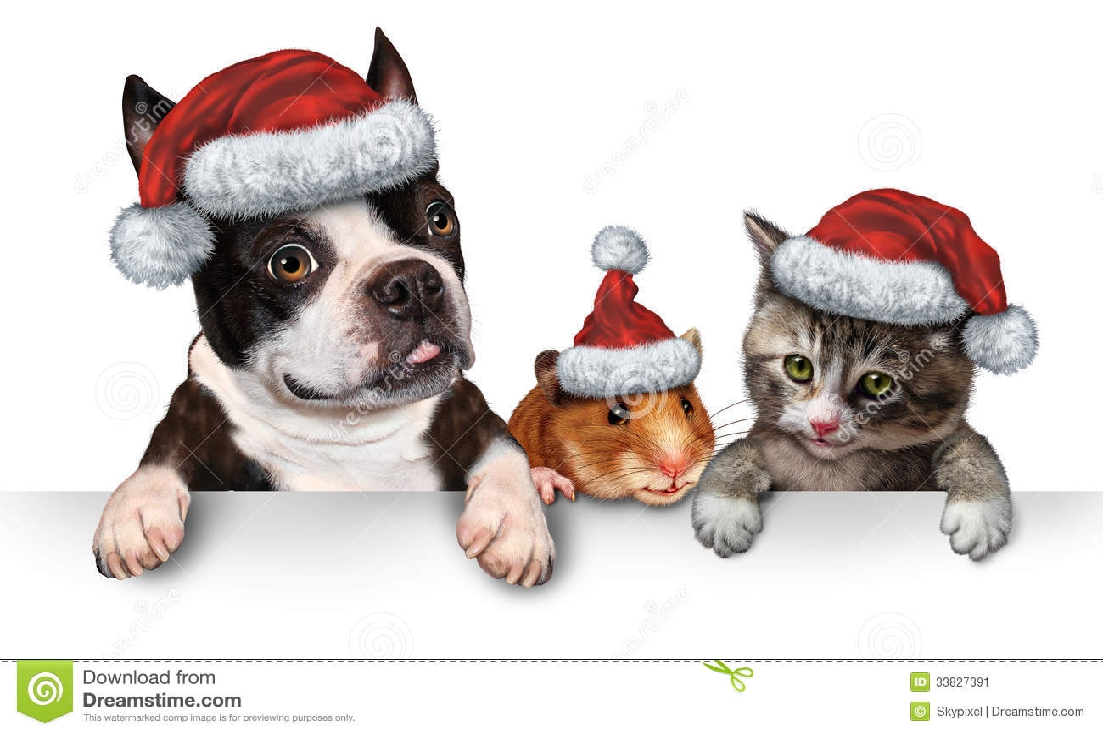 Christmas Pet Sign Stock Image - Image: 33827391