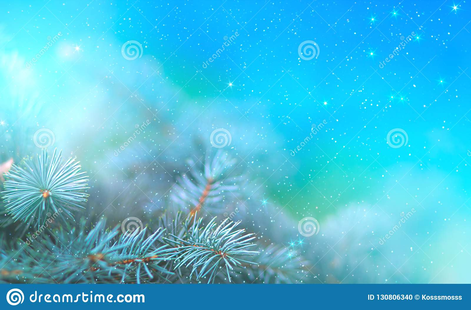 Christmas pine branch in the rays of light close up, blue background with reflections of stars and beautiful bokeh of lanterns.