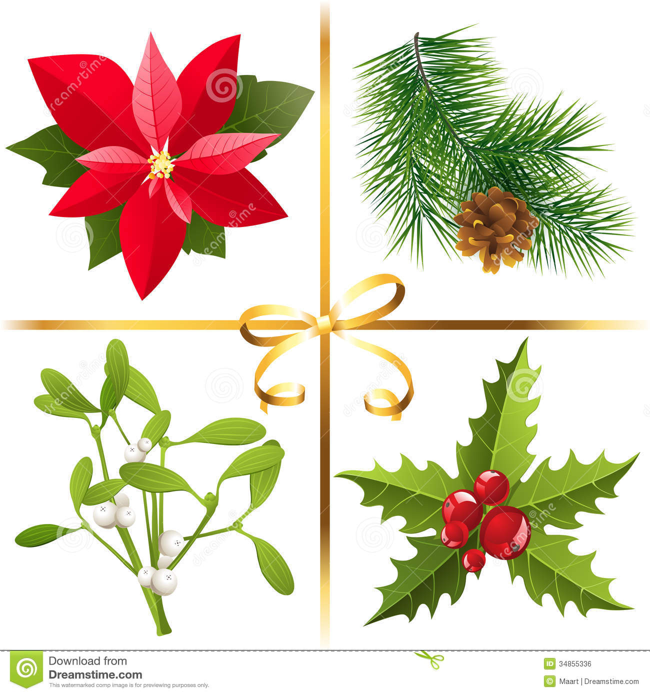 Christmas Plants Royalty Free Stock Image Image 34855336