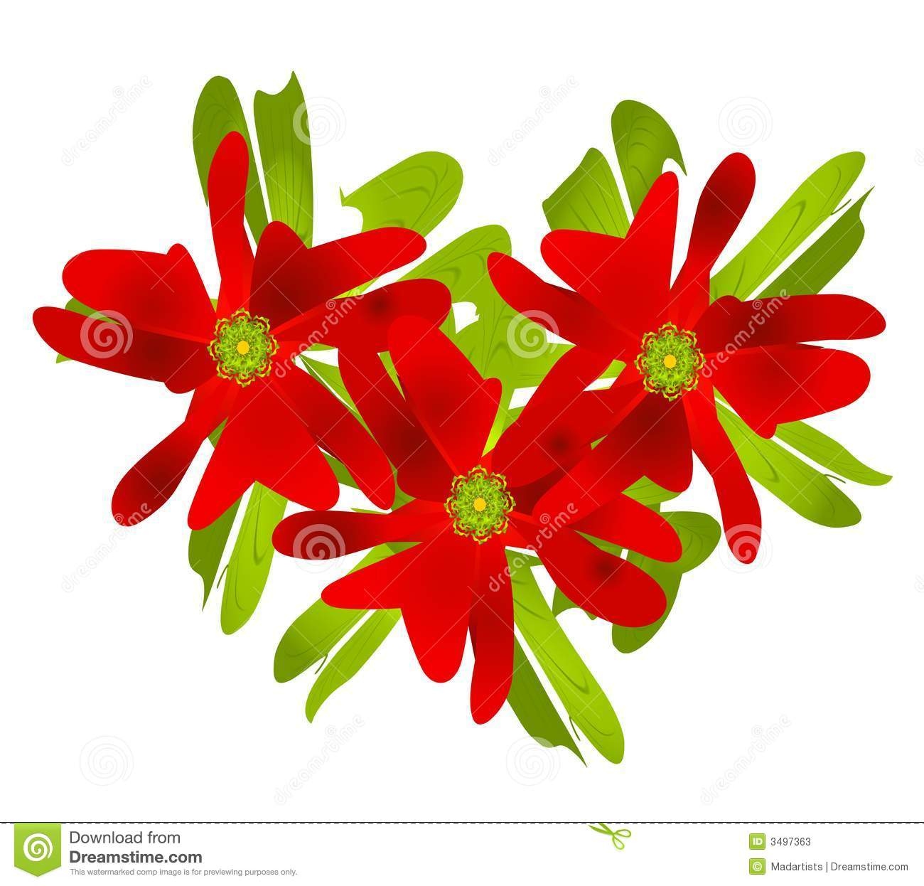 christmas poinsettia clip art stock photos  image, Beautiful flower