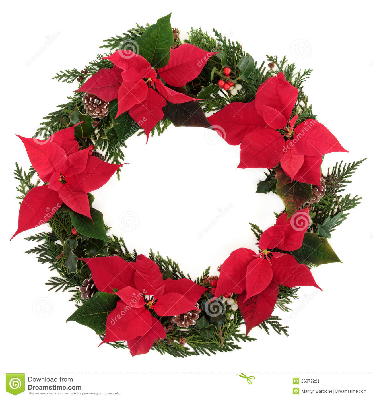 Christmas poinsettia wreath stock image image 26877221 for 5ft poinsettia garland christmas decoration