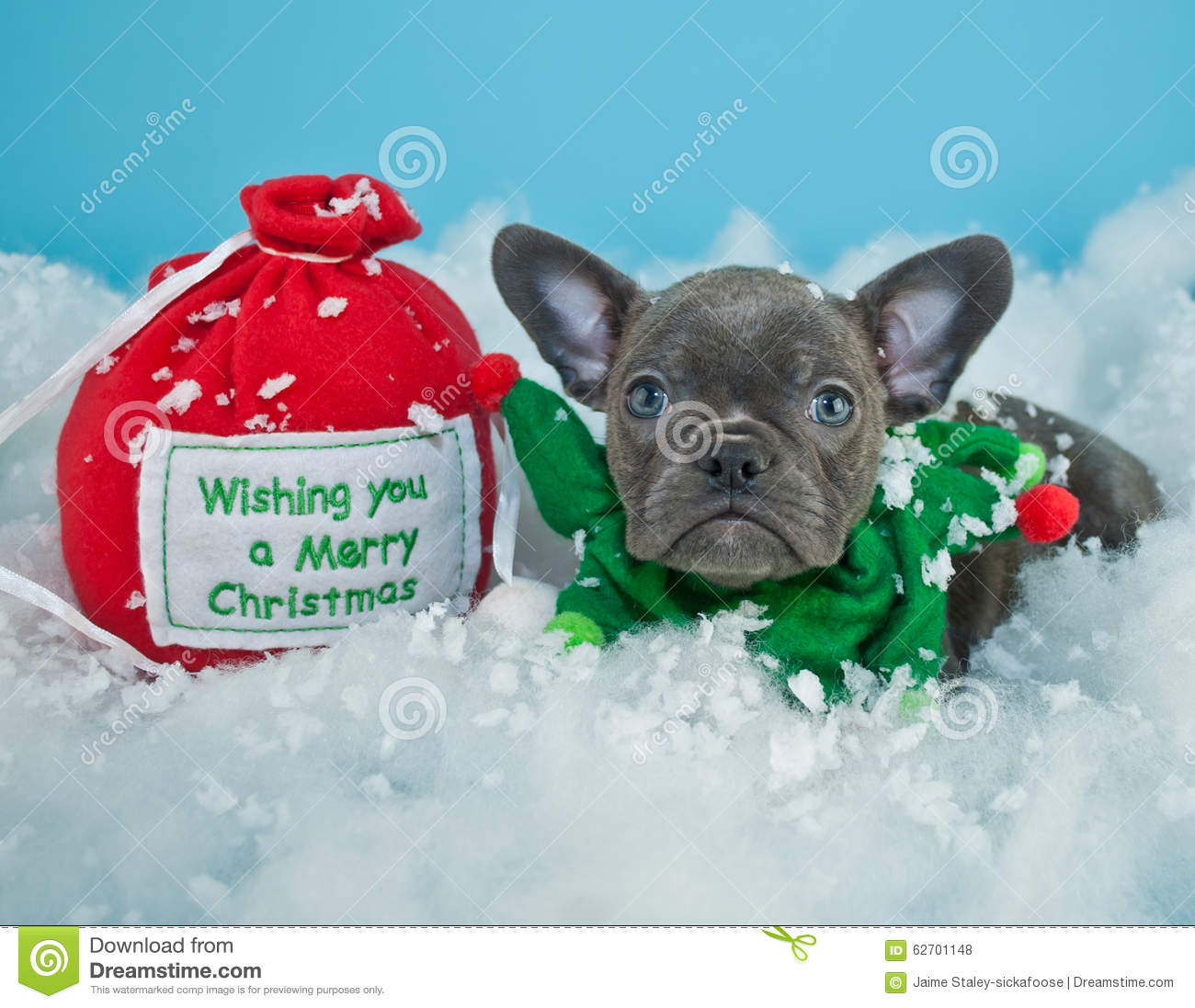 Cute french bulldog gifts for christmas