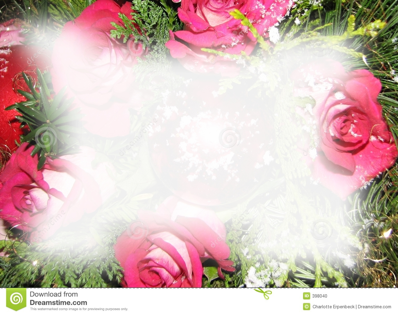 Christmas Roses Background Stock Photo - Image: 398040
