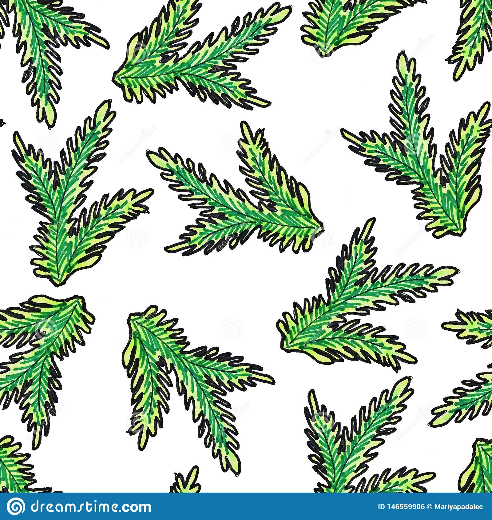 Christmas seamless pattern hand-drawn. Green branch of the Christmas tree on a white background