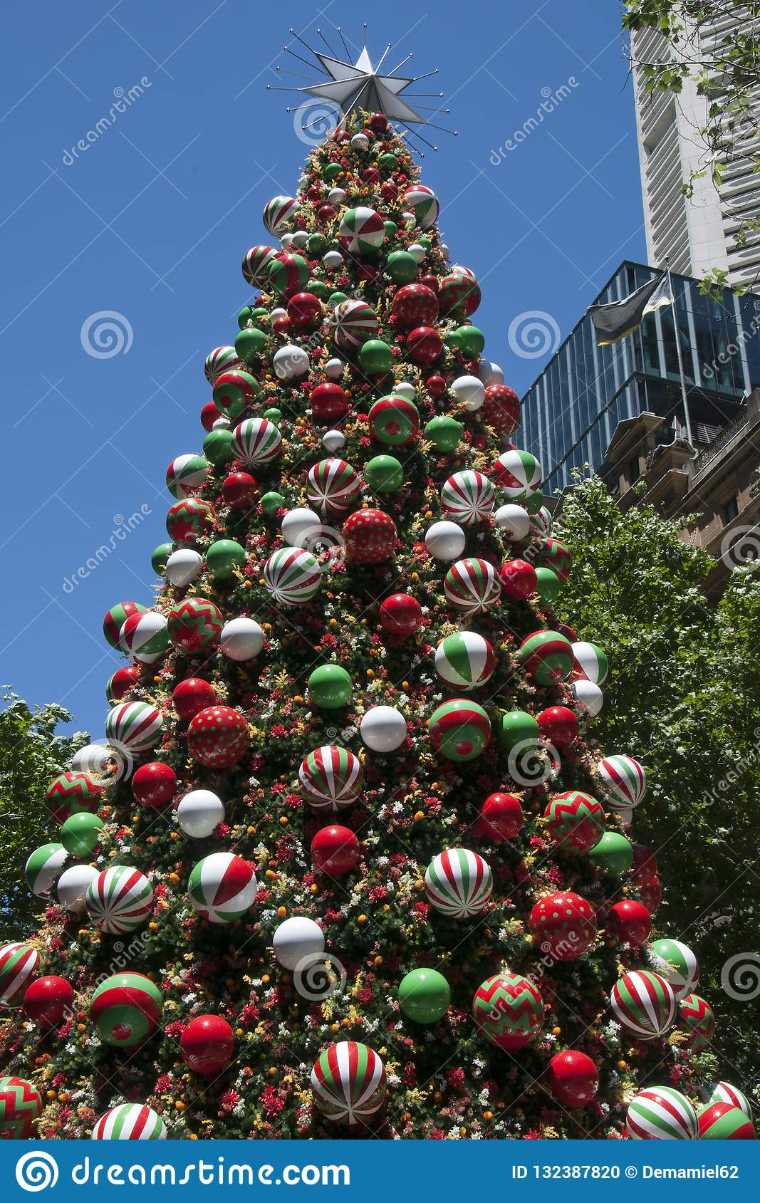 Decorated Christmas Tree In Martin Place With Highrise ...