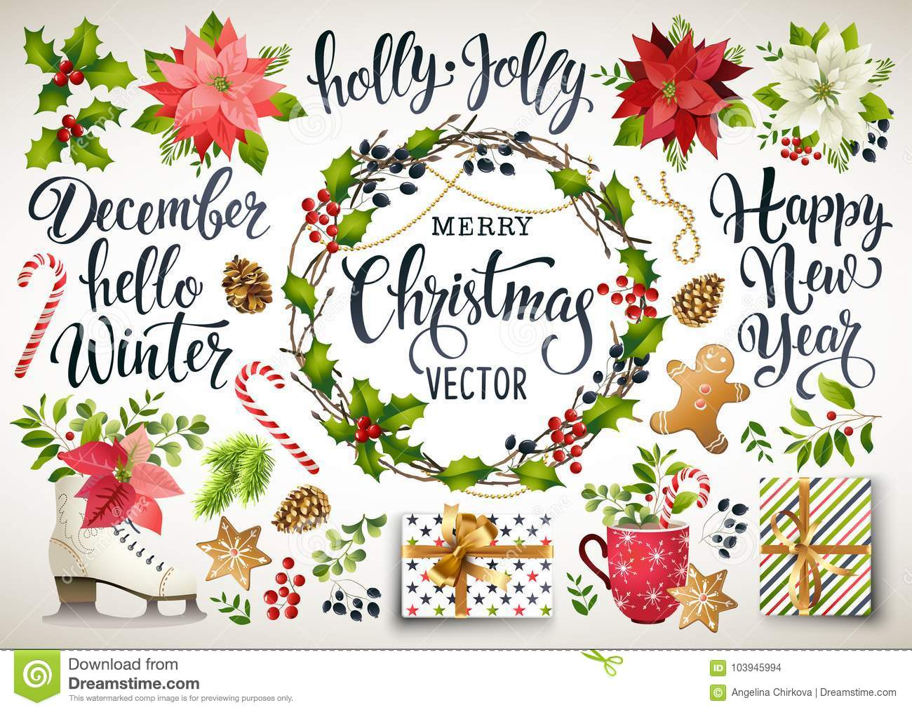 Christmas set design of poinsettia, fir branches, cones, holly and other plants. Cover, invitation, banner, greeting c