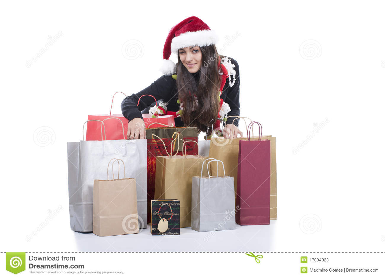 Christmas Shopping Royalty Free Stock Photos Image 17094028