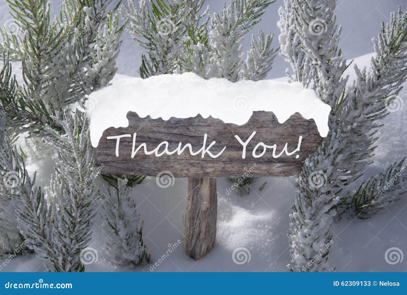 Christmas Sign Snow Fir Tree Branch Text Thank You Stock