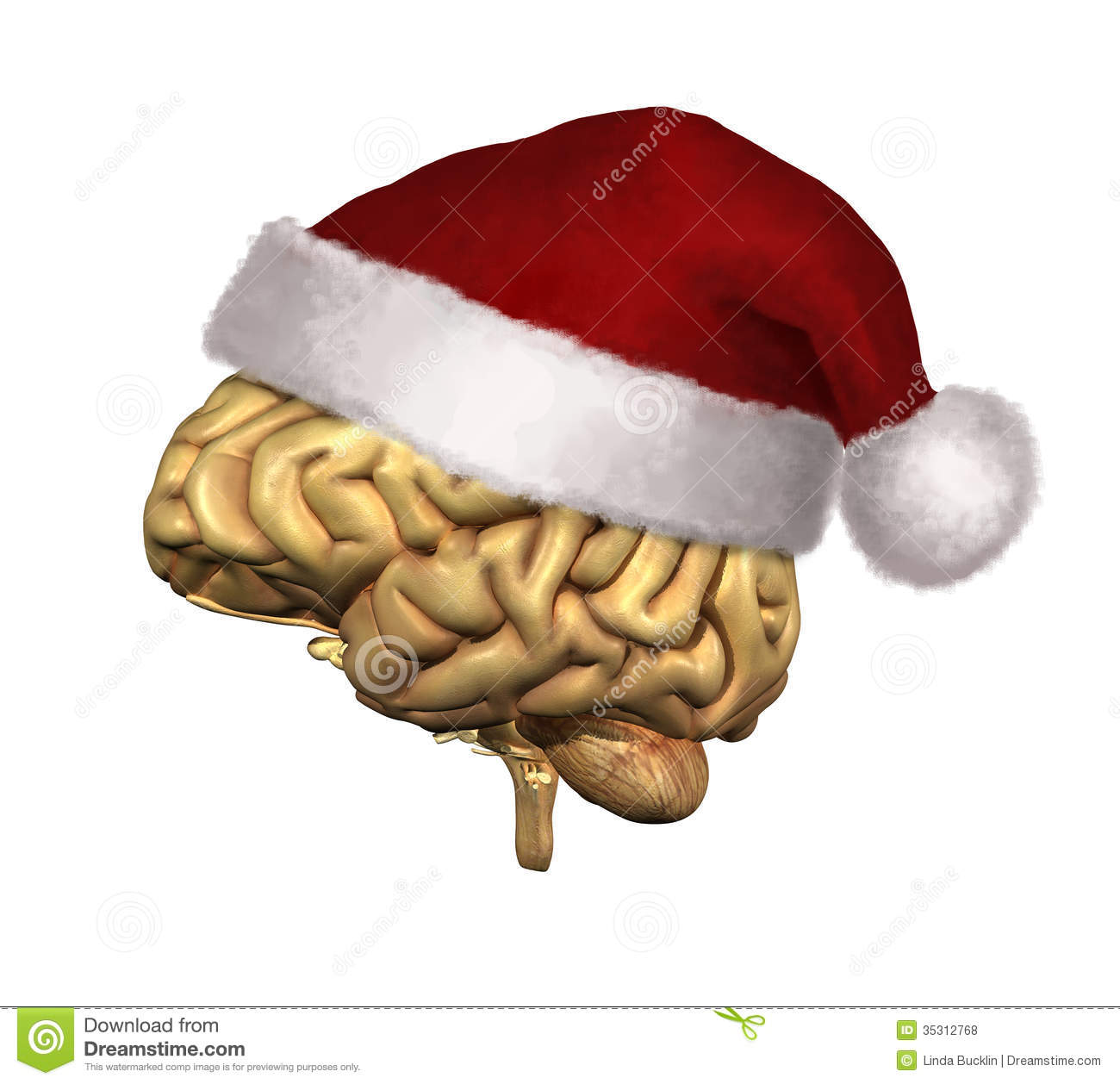 Royalty Free Stock Photos Christmas Smart People Human Brain Wearing Santa Claus Hat D Render Digital Painting Image35312768 on christmas tree themes
