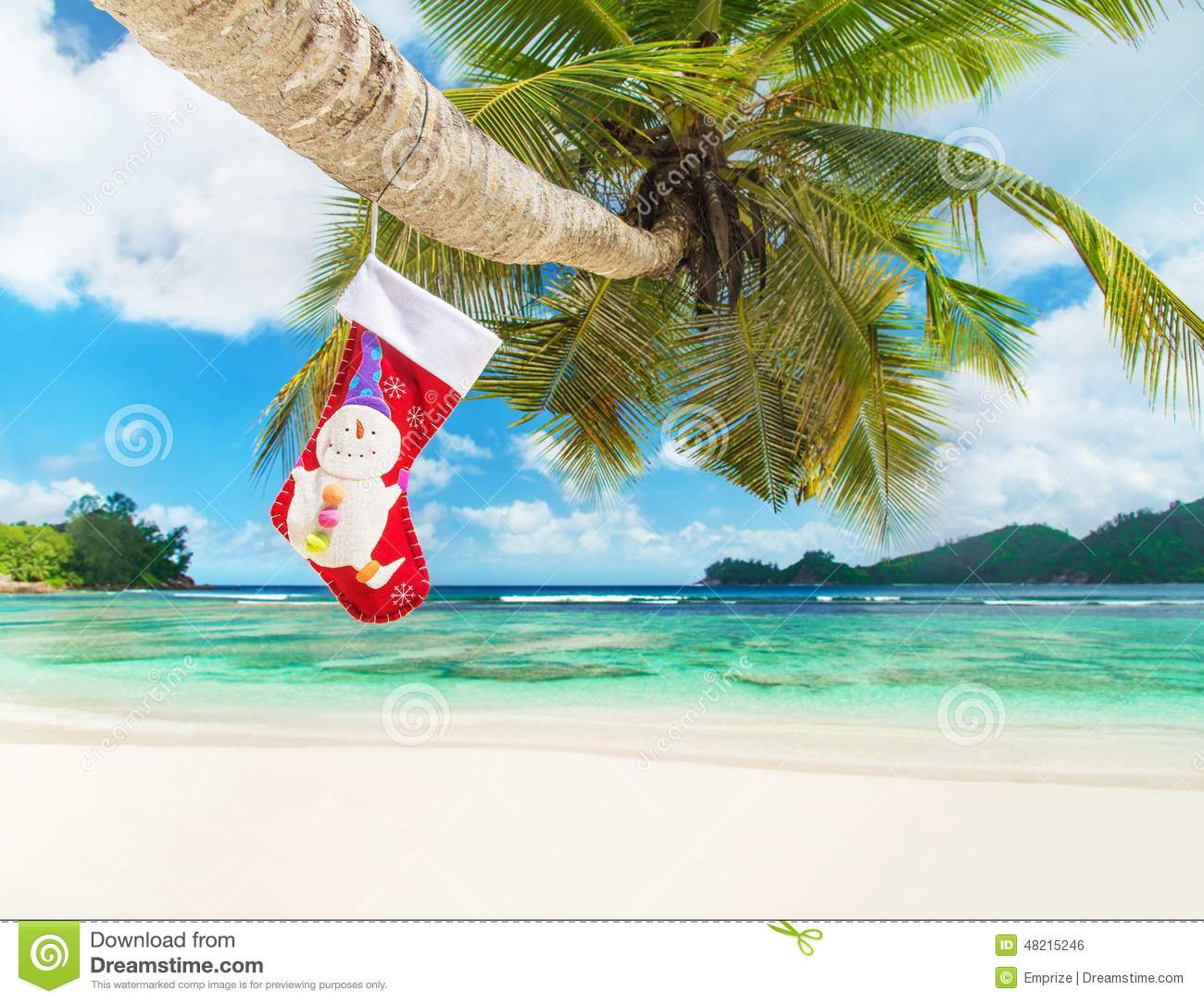 Christmas Sock On Palm Tree At Exotic Tropical Beach Stock Photo ...