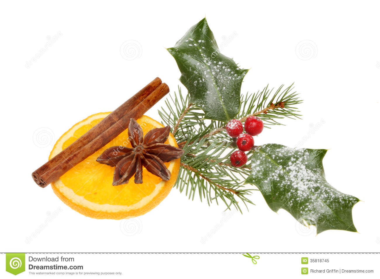 Christmas spice, cinnamon, star anise on a slice of orange with holly ...