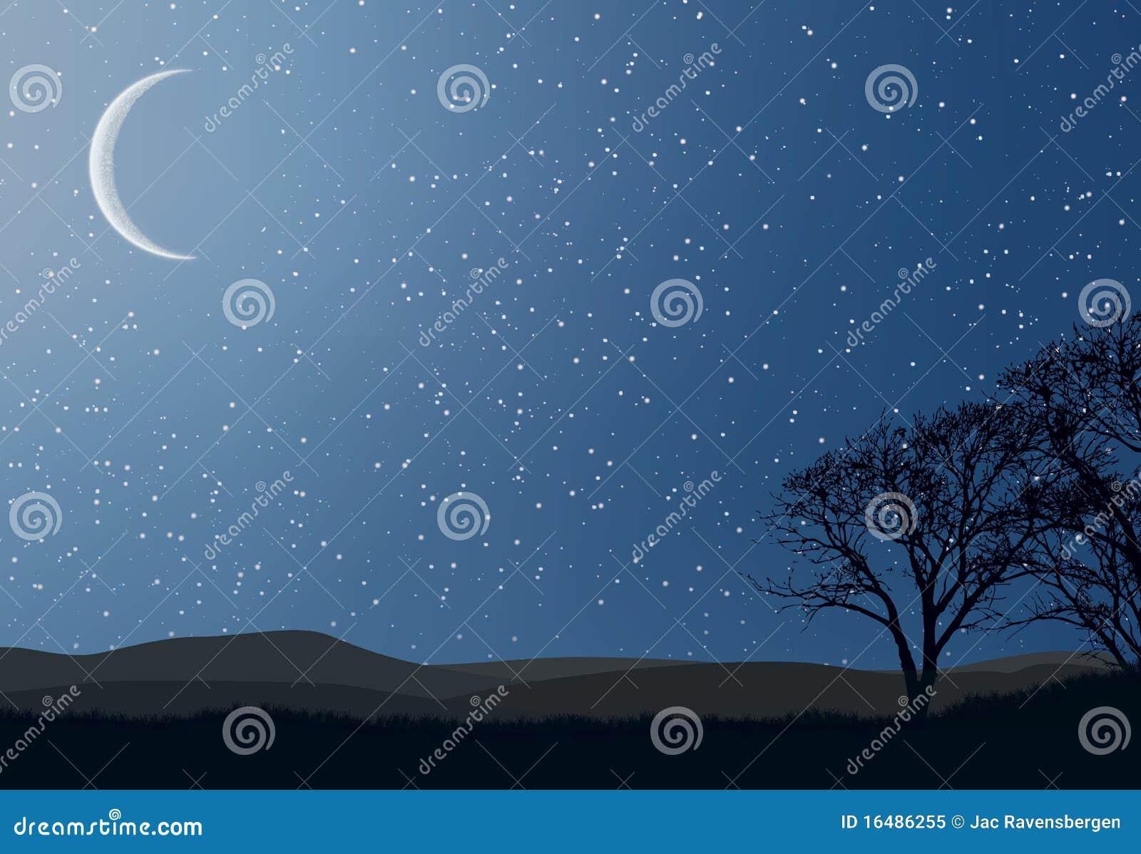 Christmas_Stars