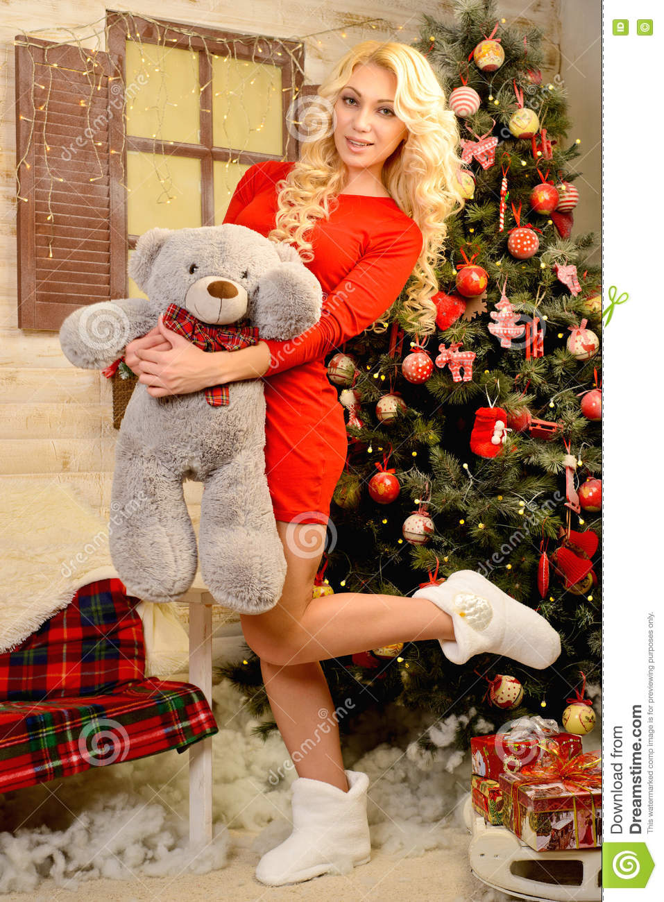 Download Christmas Story Or Dream In Stock Image