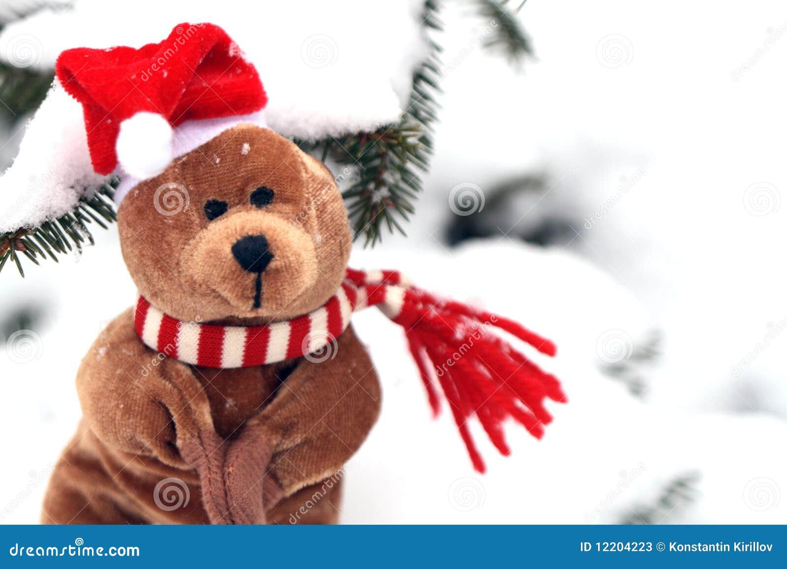 Christmas Teddy Bear Stock Photos - Image: 12204223