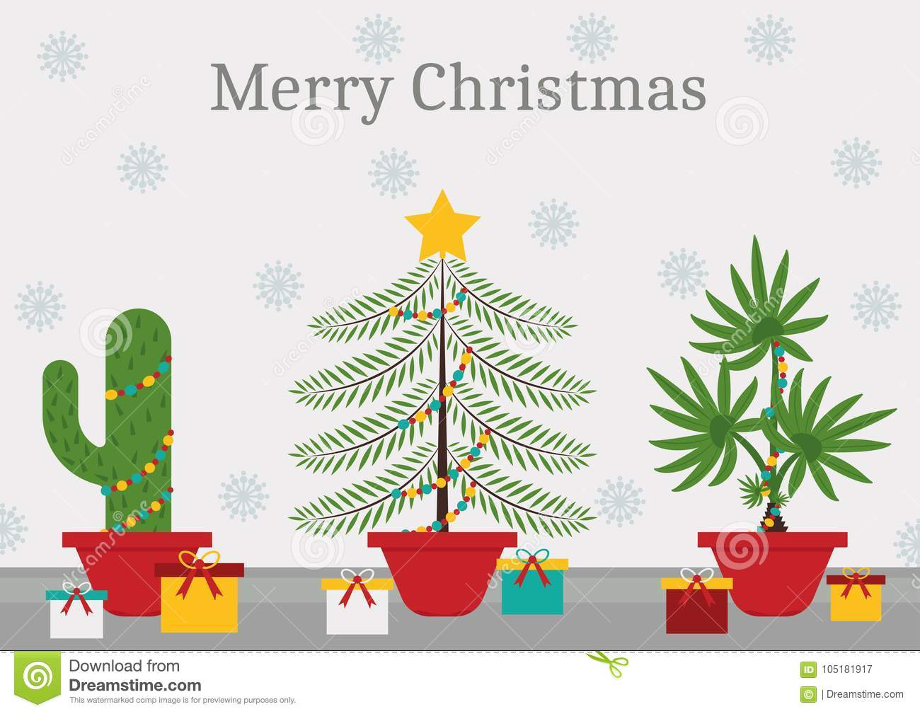 a cactus spruce and a palm tree with christmas decorations and lights