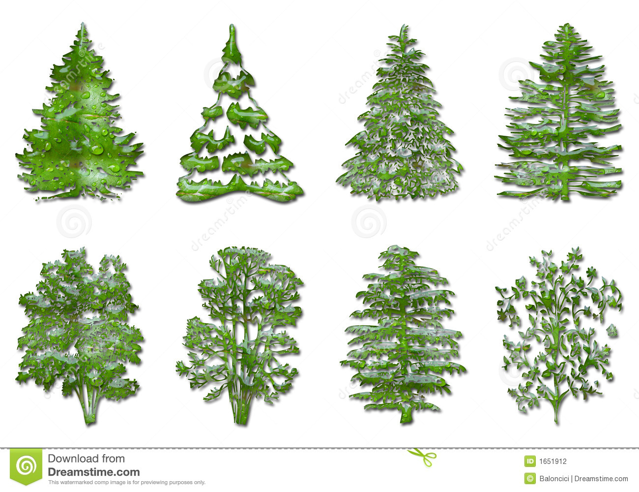 Types Christmas Trees