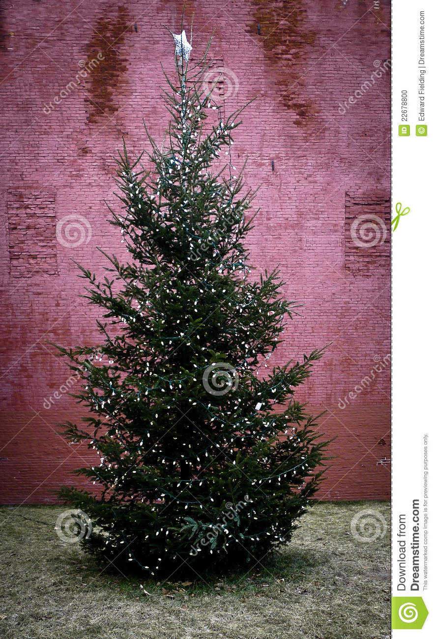 how to put lights on a sparse christmas tree