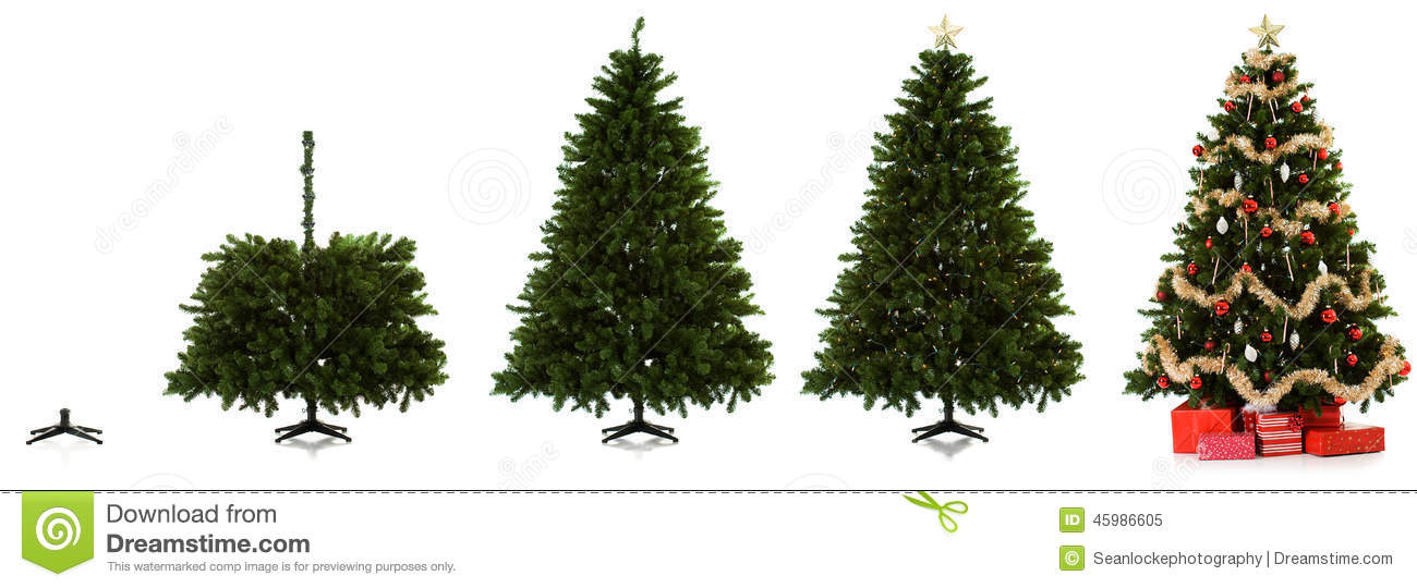 Christmas Tree Being Set Up In Four Images Stock Image