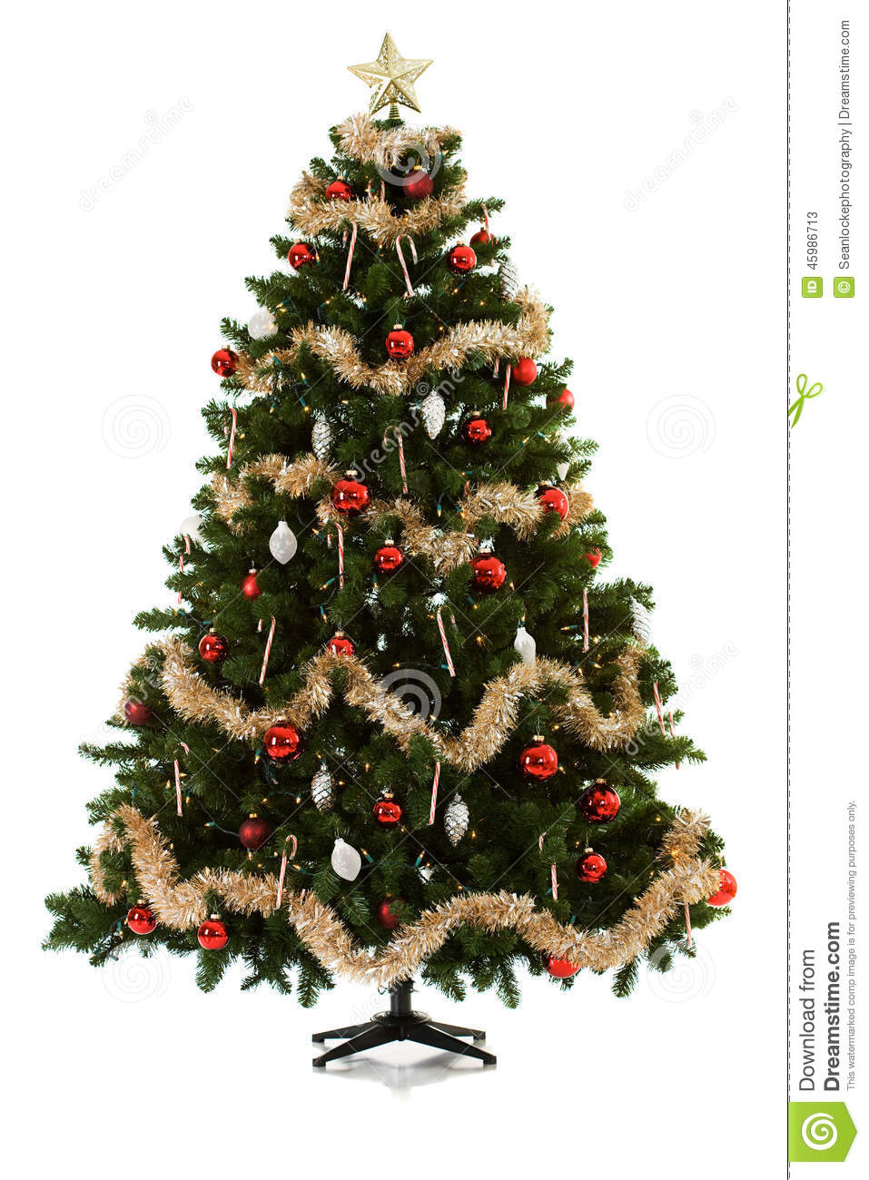 download christmas tree being set up in 16 image series stock image image of holiday - How To Put Up A Christmas Tree
