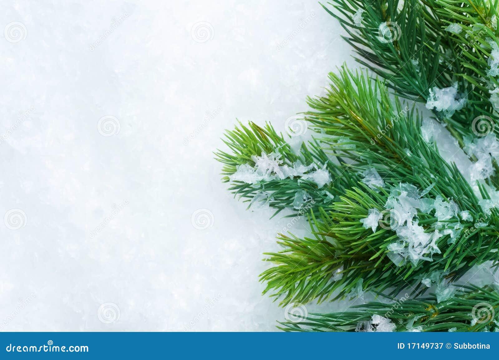 Christmas Tree Border Royalty Free Stock Photography ...