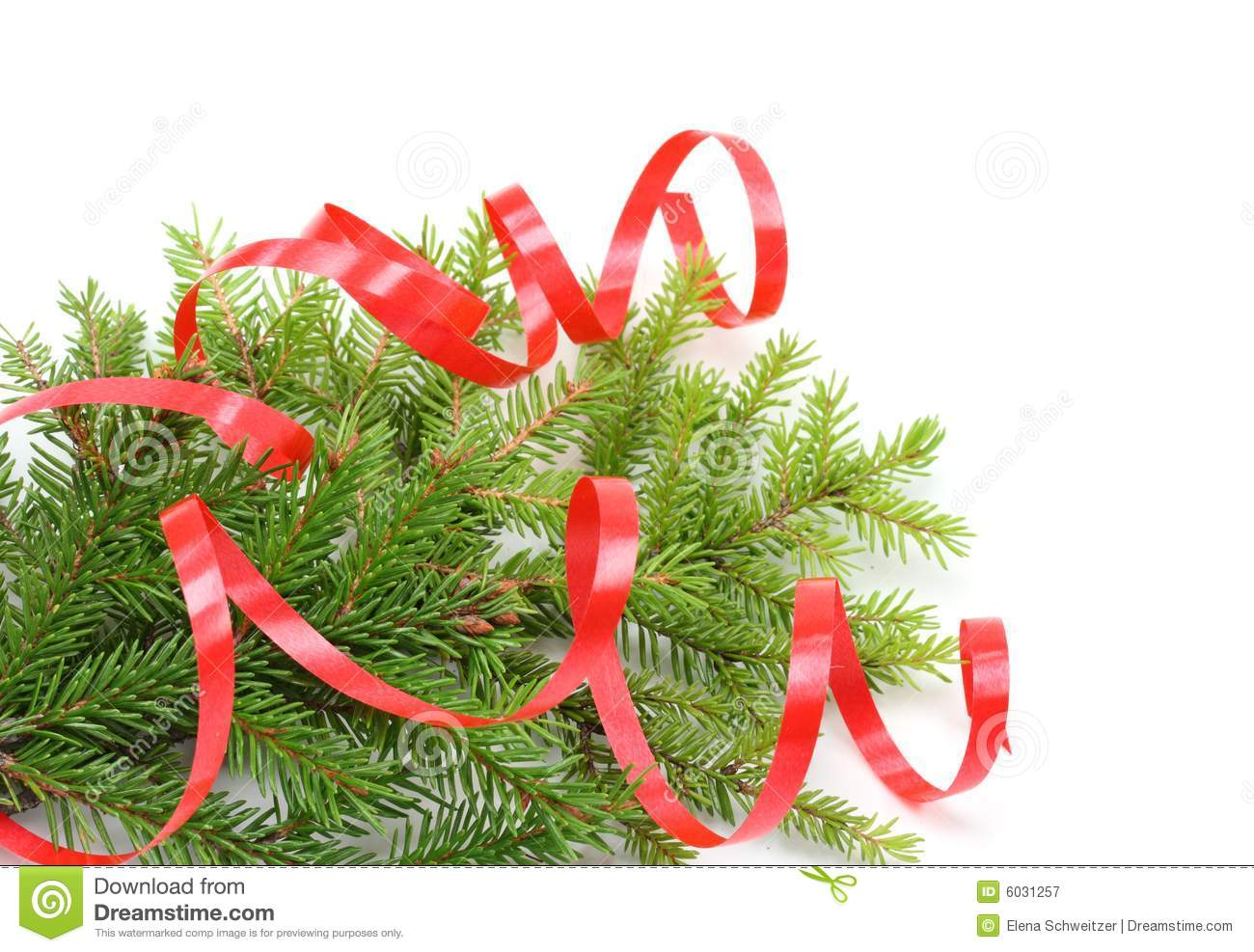 Christmas tree branch and red ribbon royalty free stock for Red ribbon around tree