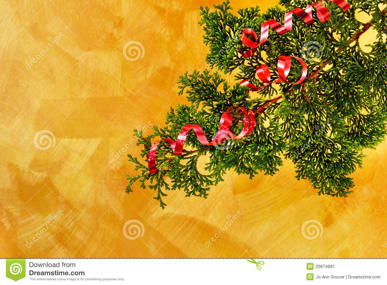 Christmas tree branch with red ribbon decoration stock for Red ribbon around tree
