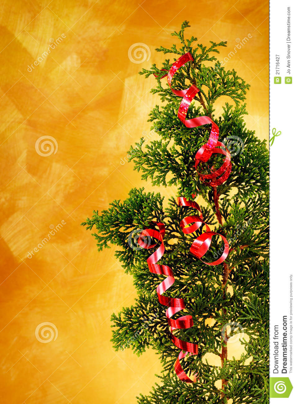 Christmas tree branch with red ribbon decoration royalty for Red ribbon around tree