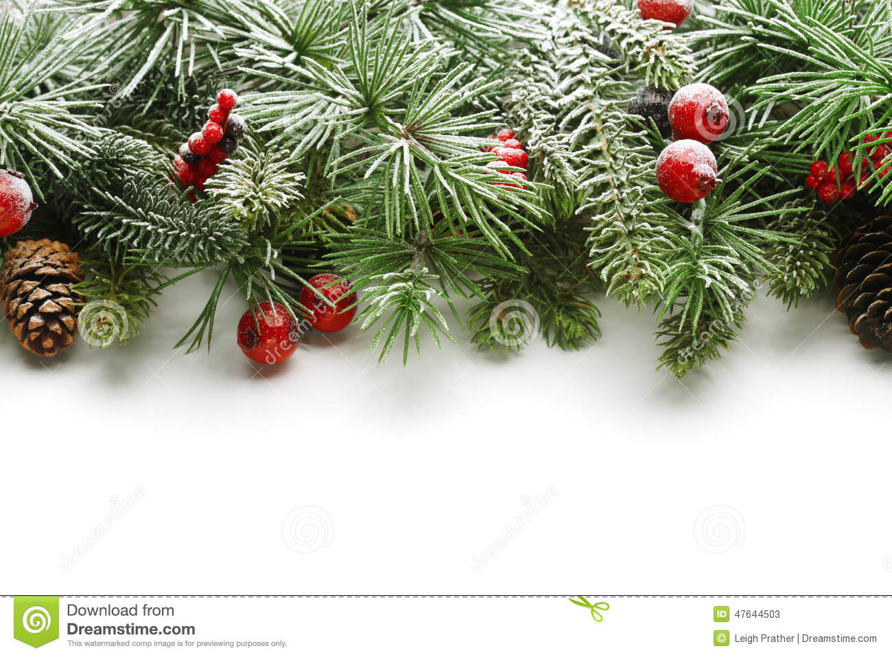 christmas tree branches background - Christmas Tree Branches