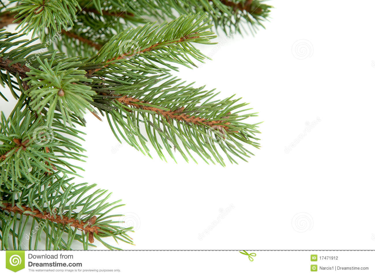 Christmas Tree Branches Border Over White Stock Photography ...