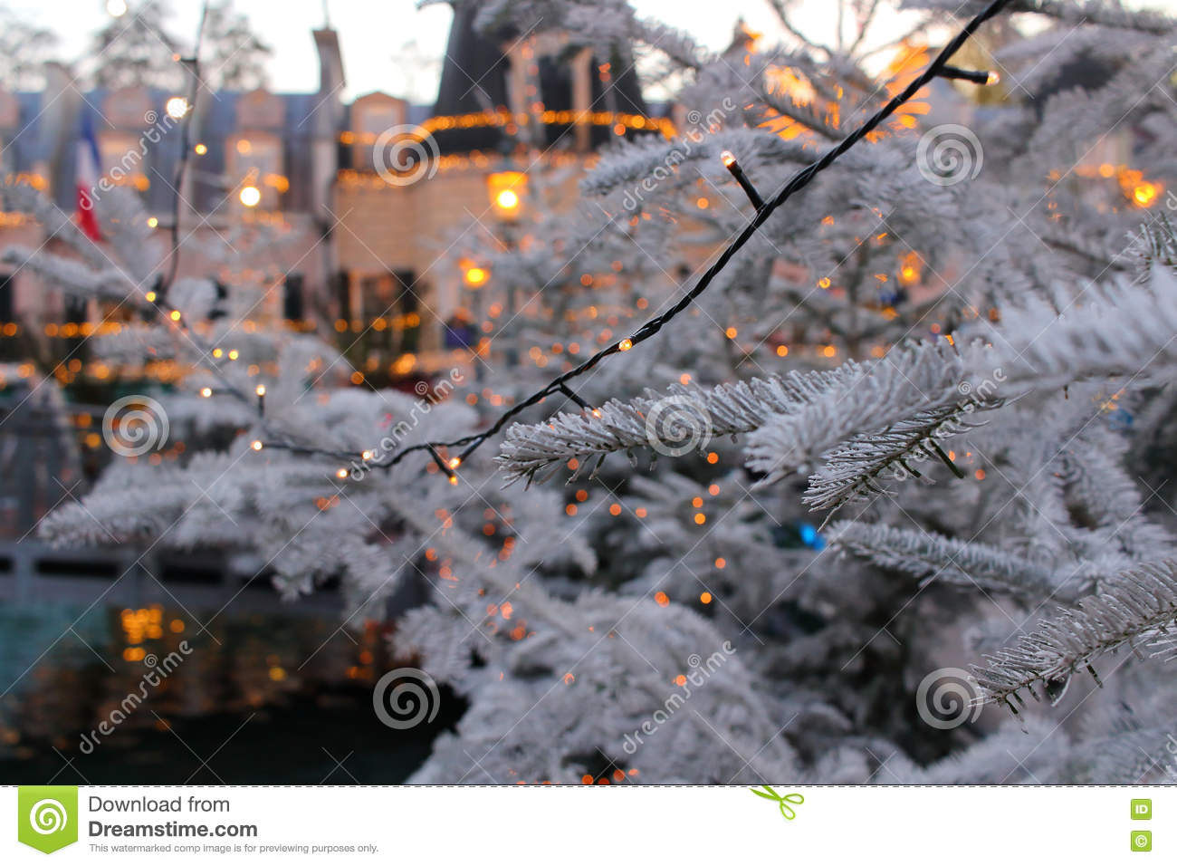Christmas tree branches with fairy lights by dusk