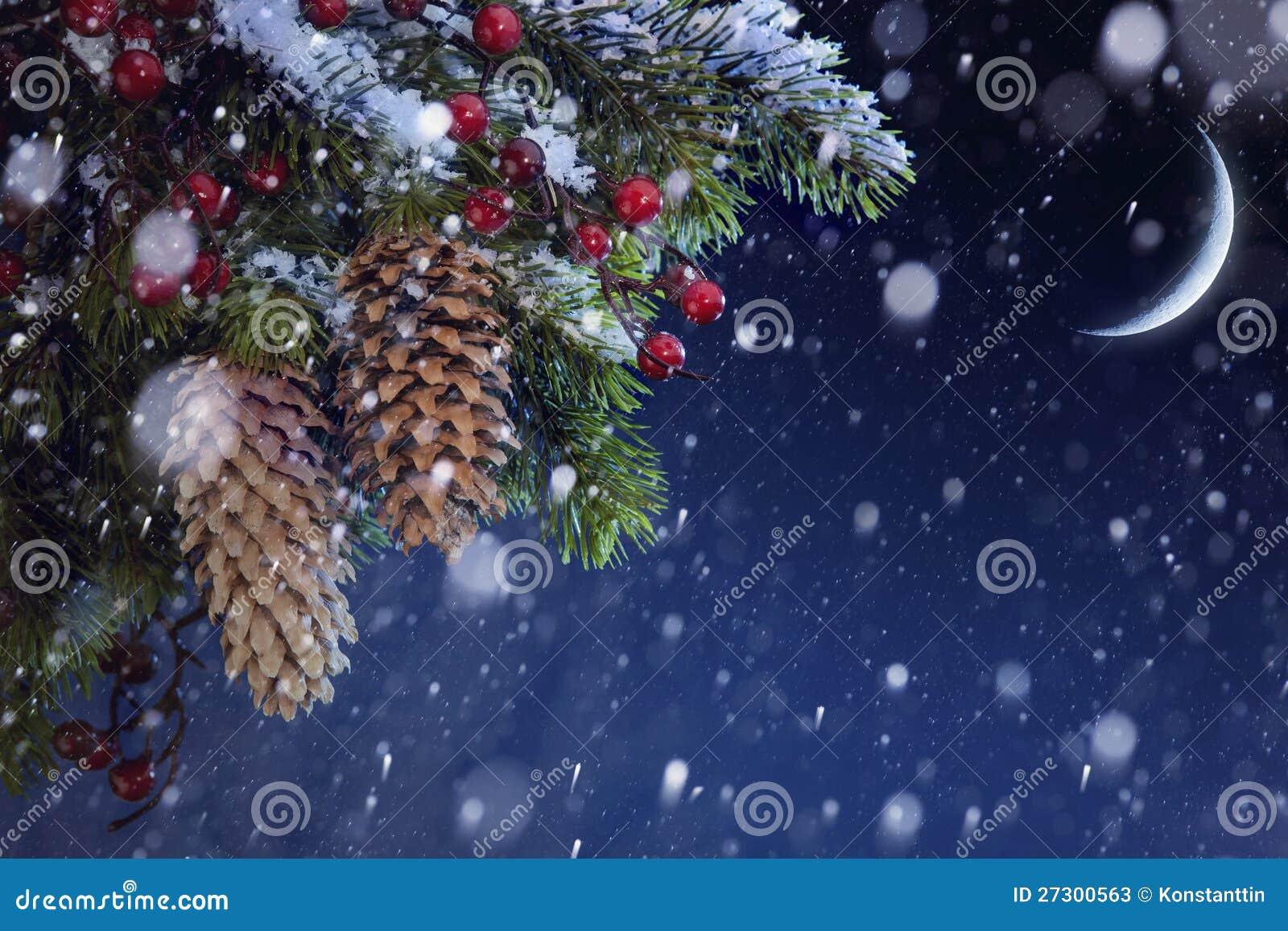 Christmas tree covered snow on blue night sky