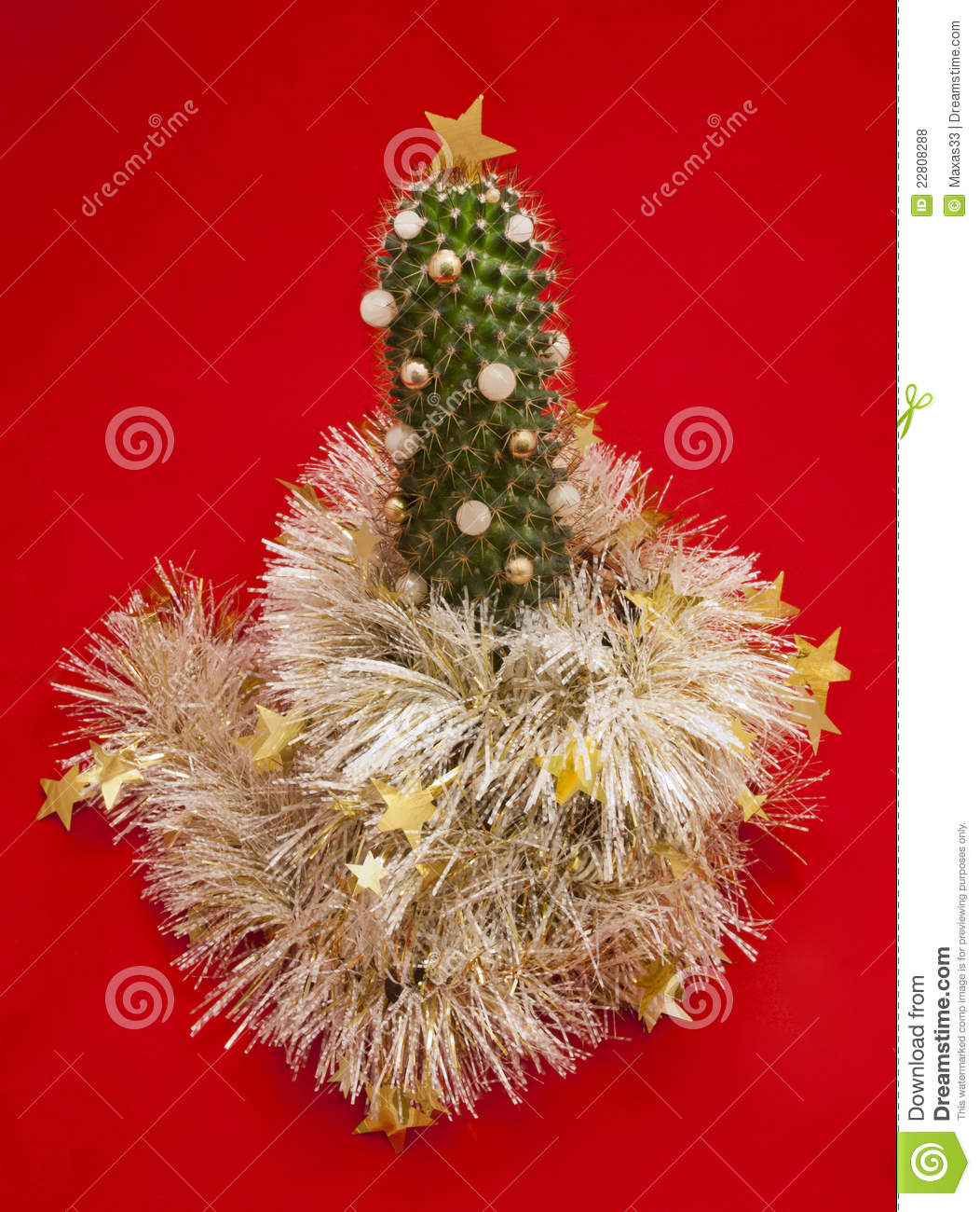 Cactus Decorated For Christmas: The Decorated Cactus. Royalty Free Stock