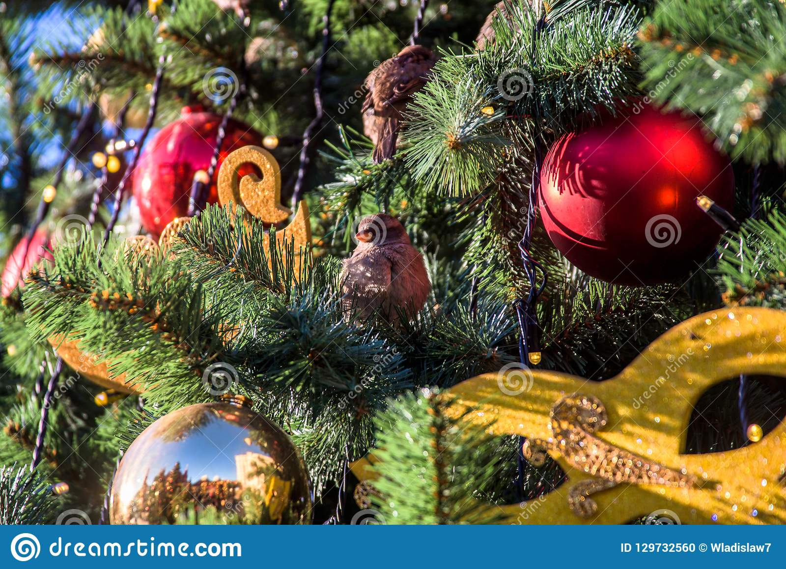 Christmas Ball On Branch Stock Photo Image Of Outdoor 129732560