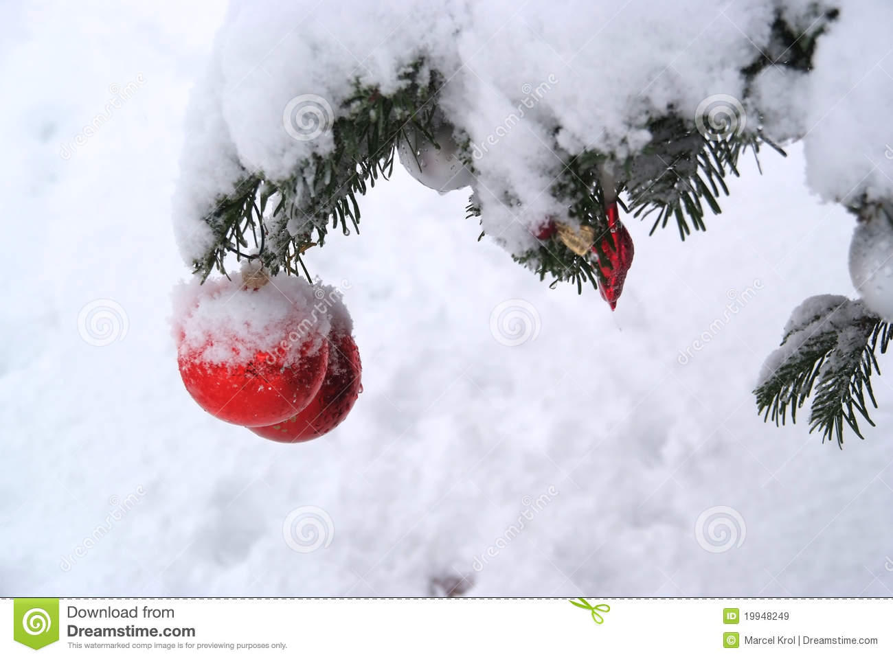 Real christmas tree decorating ideas - Christmas Tree Decoration With Real Snow Royalty Free