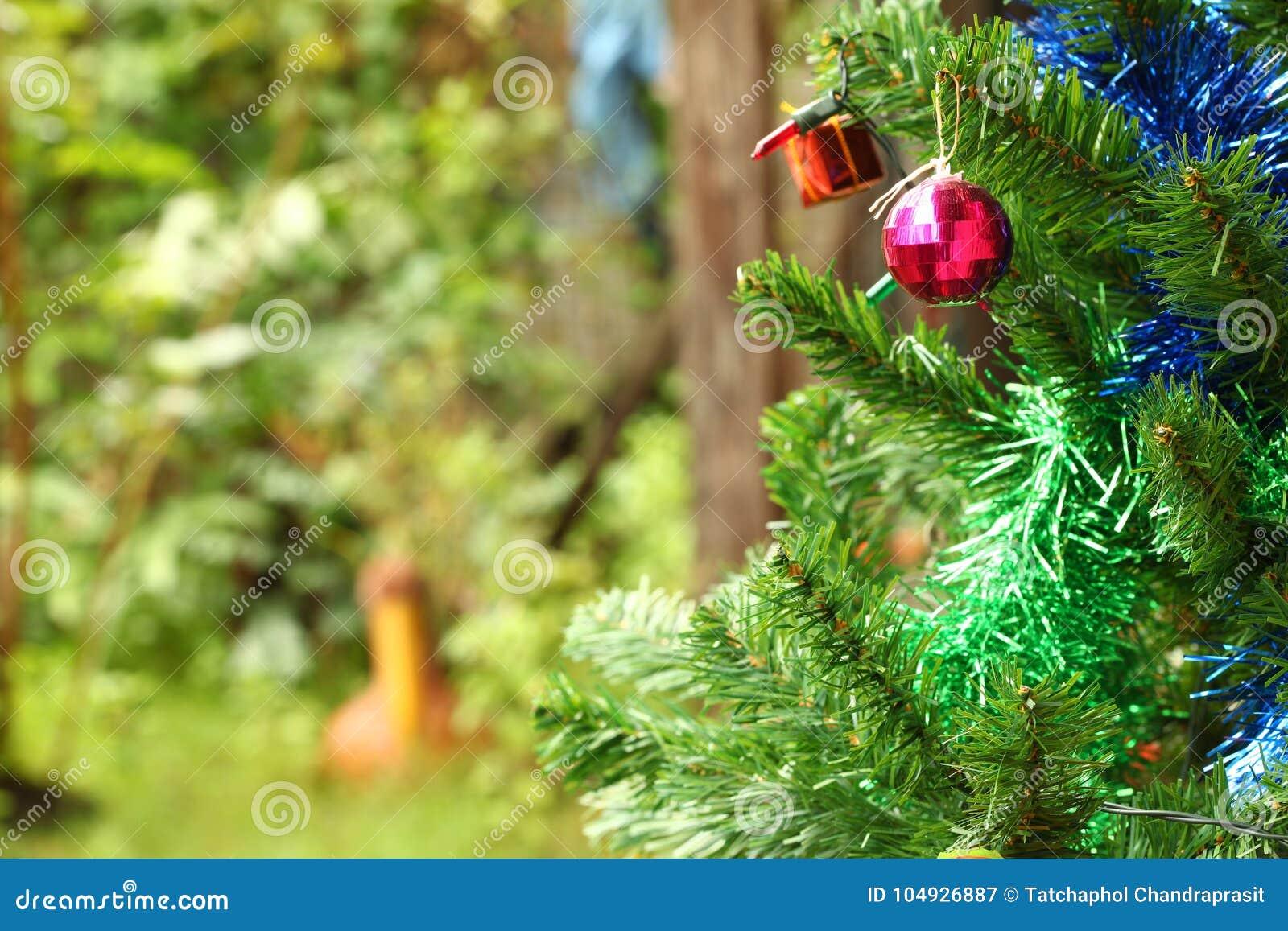Christmas Tree Decoration Scene. Stock Image - Image of ...