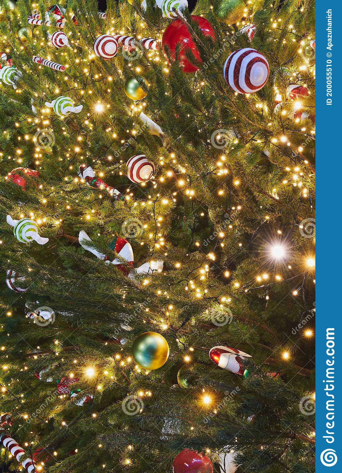 Christmas Tree Decorations On The Natural Tree Stock Photo Image Of Festive Holiday 200055510