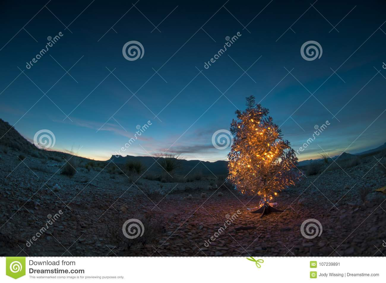 Christmas Tree In The Desert.Christmas Tree In The Desert Stock Image Image Of Sunset