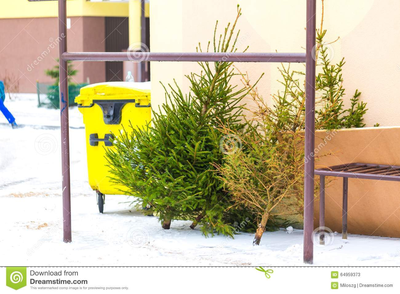 Christmas Tree Discarded In The Trash Stock Image - Image ...