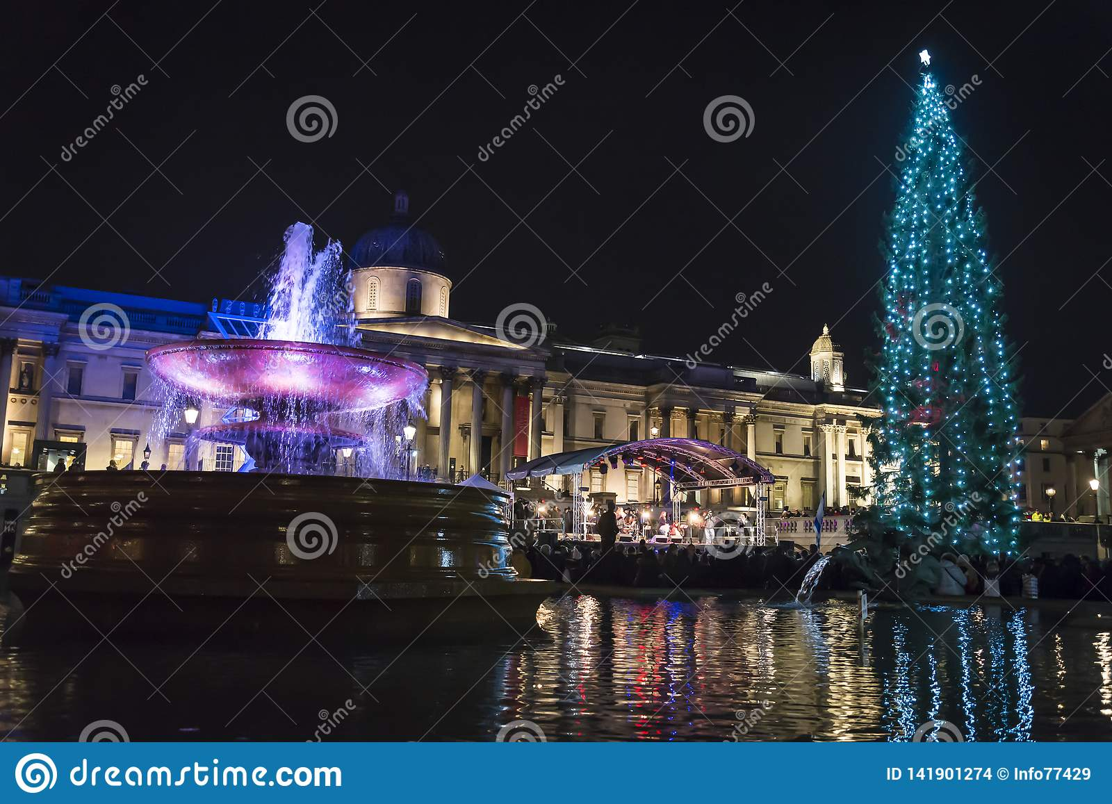 Christmas tree, Trafalgar Square at night, Westminster, London, England, UK