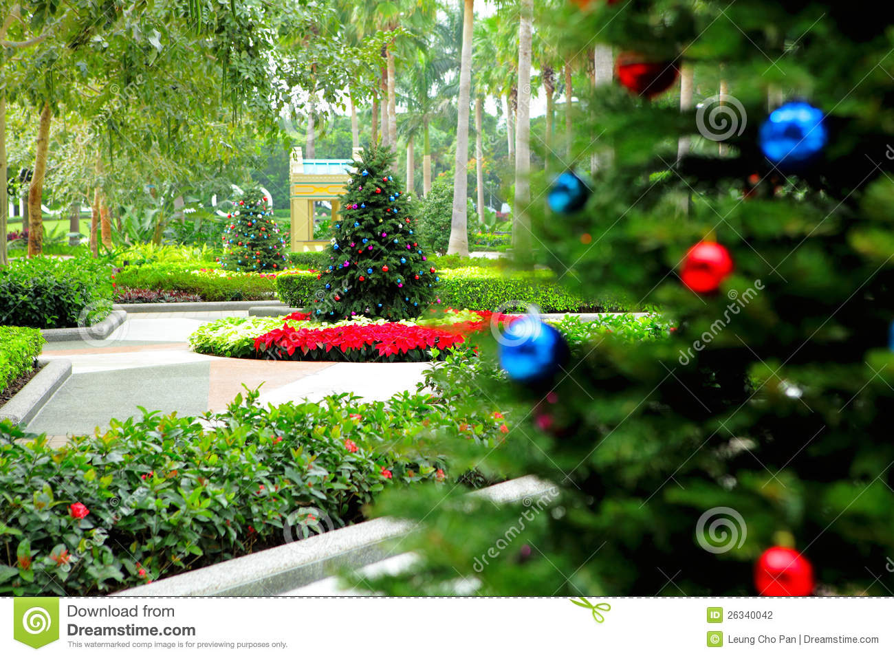 Christmas Tree In Garden Stock Photography