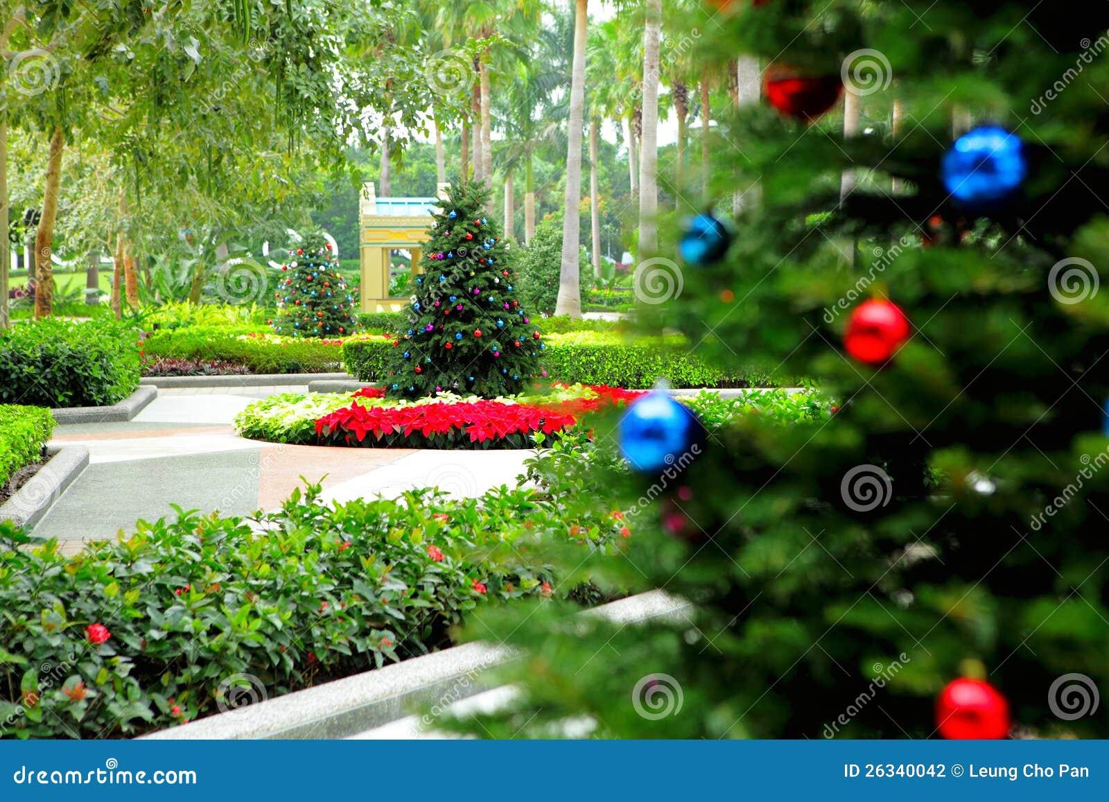 Christmas tree in garden stock photo image of decoration for Garden trees photos
