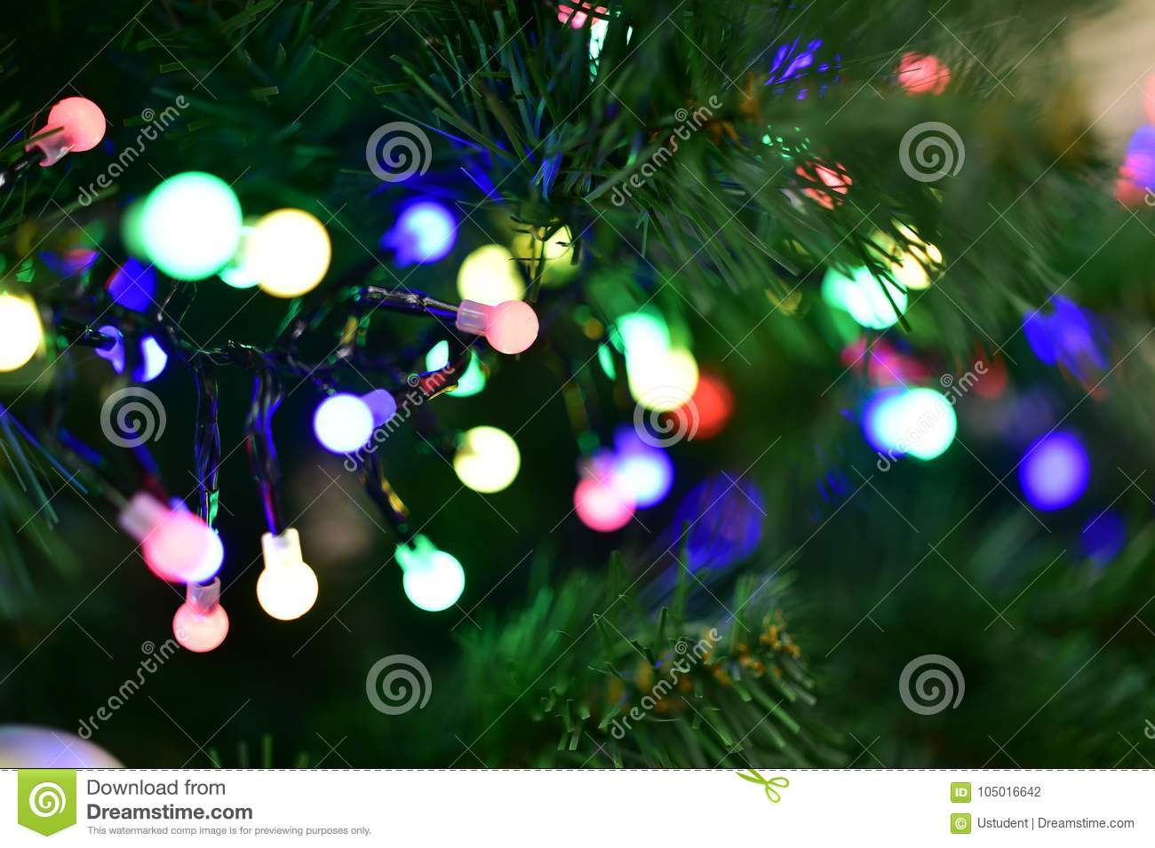 Christmas Tree With Garland Lights Of Different Colors Stock Photo