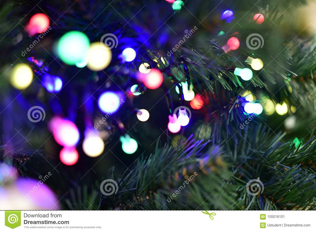 Christmas Tree With Garland Lights Of Different Colors Stock Image
