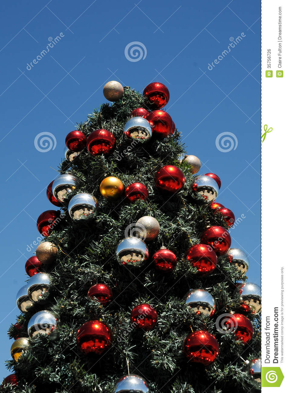 Christmas Tree Glinting Under Sunny African Sky Royalty