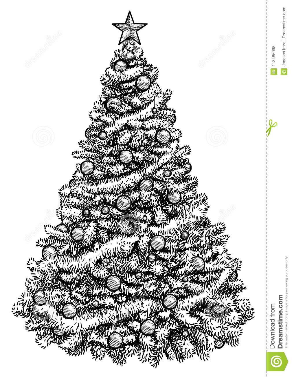 Drawing Of A Christmas Tree.Christmas Tree Illustration Drawing Engraving Ink Line