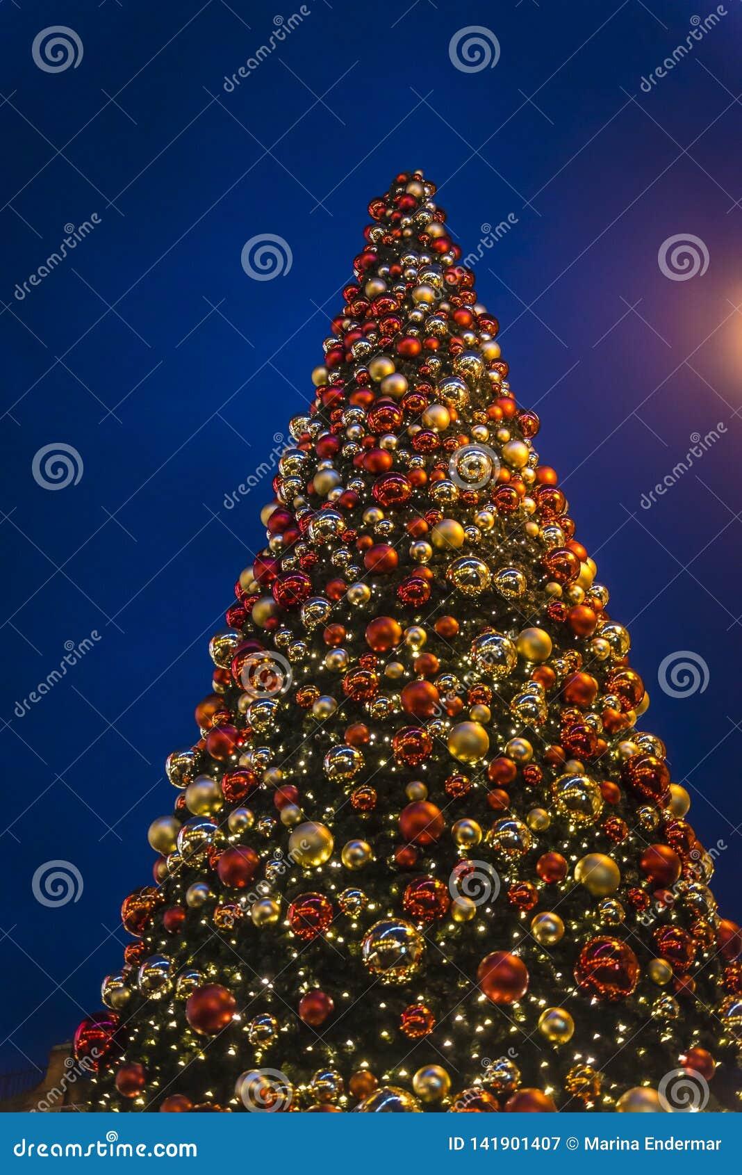 England Christmas Tree.Christmas Tree London England Uk Stock Image Image Of