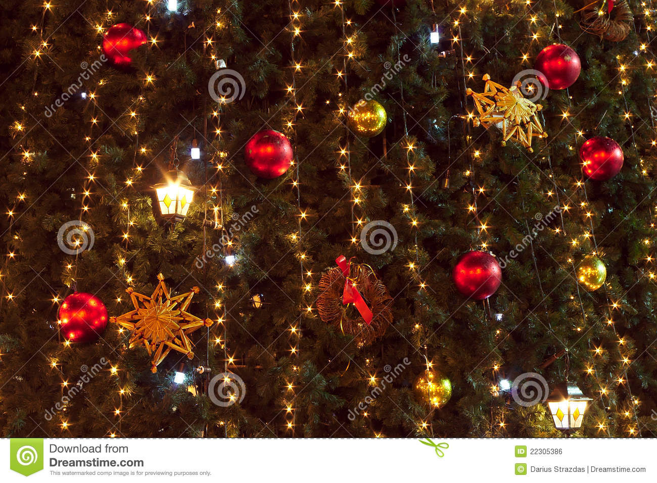 Christmas tree and lights background