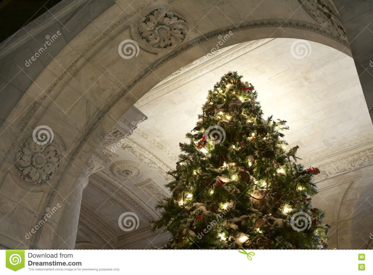 christmas tree with lights and decorations in new york public library - Library Christmas Decorations