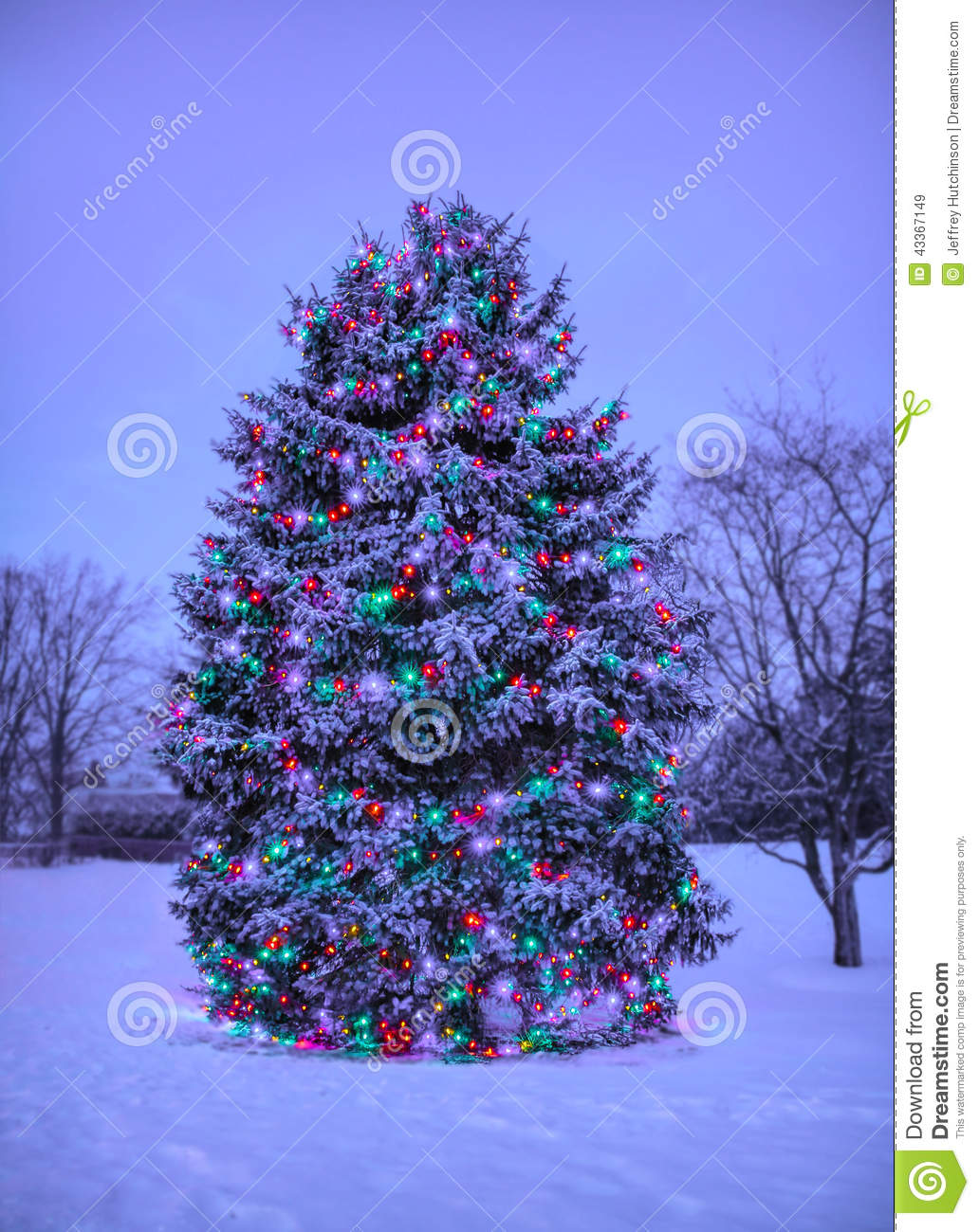 Christmas tree with lights outside in snow stock image