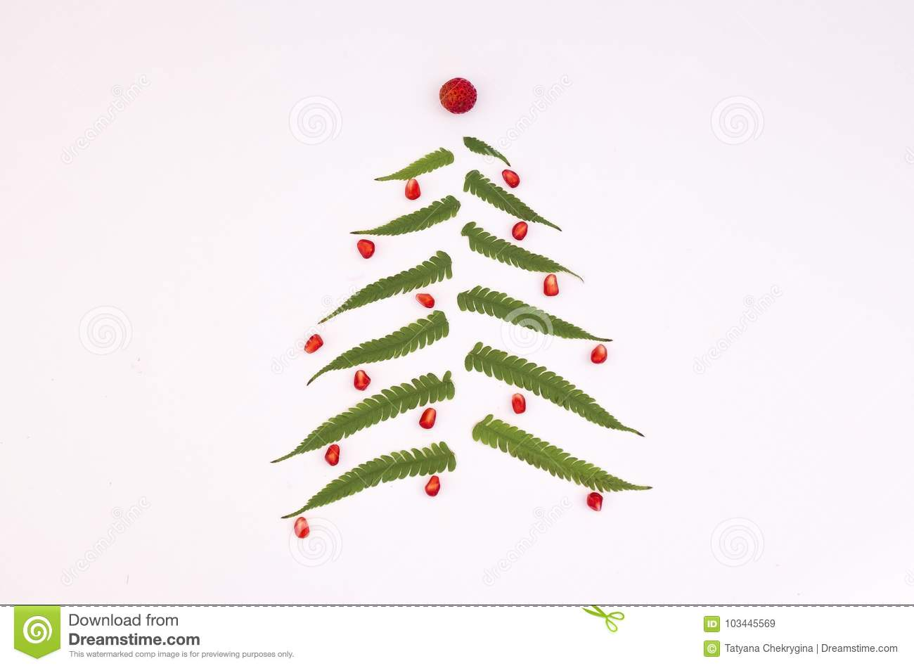 Christmas Tree Made Of Fern Leaves And Berries On White Background